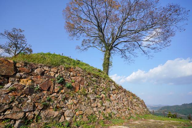 二の丸石垣DSC09323_ed