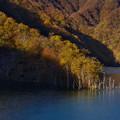 徳山ダム85-09683