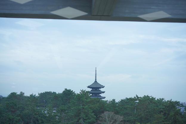 県庁食堂からDSC01944