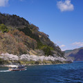 Photos: 海津大崎桜DSC09860_ed