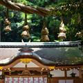 Photos: 狭井神社DSC07953_ed