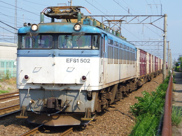 EF81-502牽引・日本海縦貫線下り貨物
