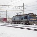 Photos: EF510‐505牽引上り貨物