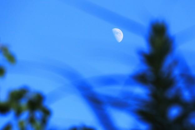写真: 初秋の風