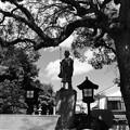 Photos: 巡礼の里スナップ03