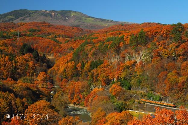 紅葉の山を登る115系