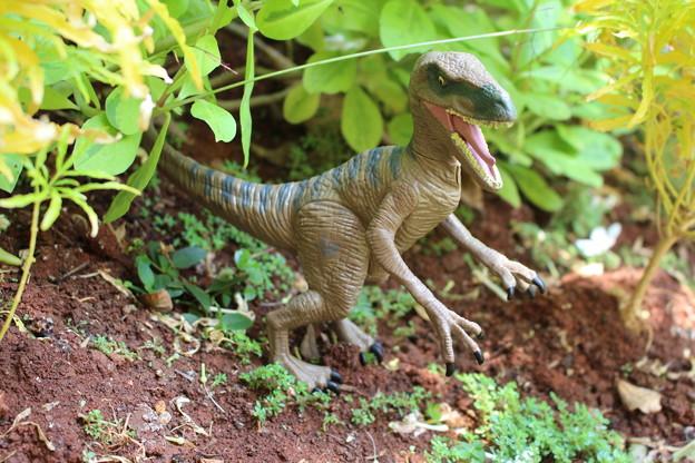 Jurassic World - Delta Adventure
