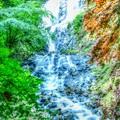 Photos: Green Forest ~旭滝~