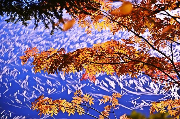 静かな湖畔の秋景色・・・半分青い(*´з`)