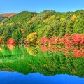 鏡面の秋景色・・・南伊奈ケ湖