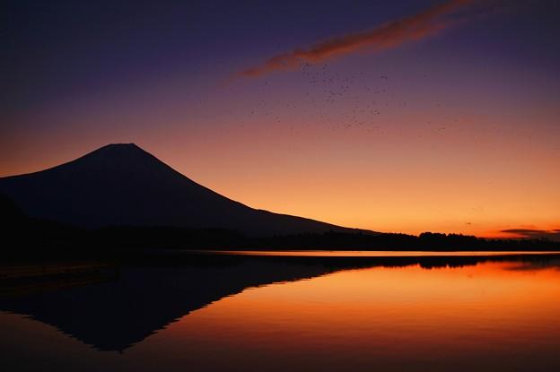 Photos: 夜明け前・・・田貫湖