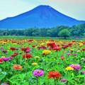 夏富士の望景