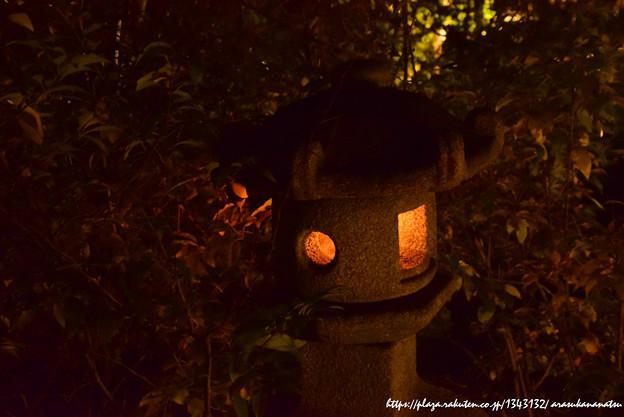 0136 燈籠