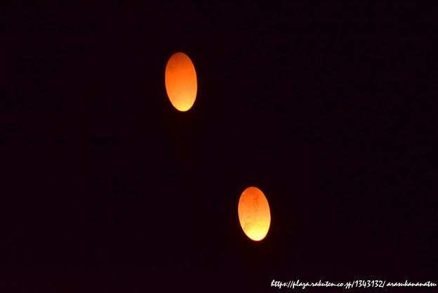 0142 竹灯り