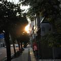 0022 夕陽を見ながら