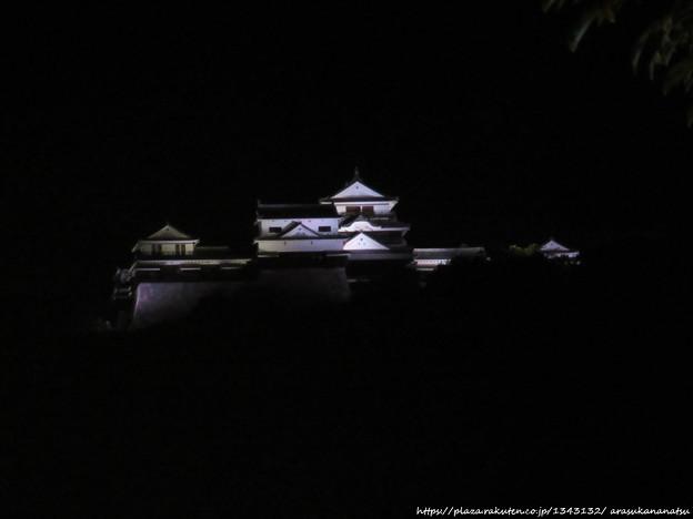 0064 松山城を見上げる