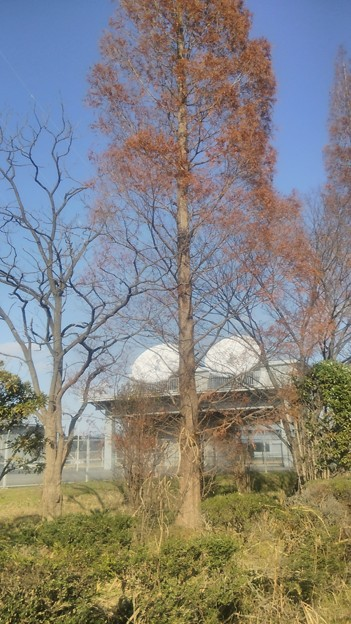【12月12日は加須市へ!その16】送信所の下の方…