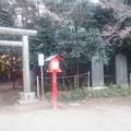 【1月4日は鷲宮神社へ!その14】こっちにも鳥居