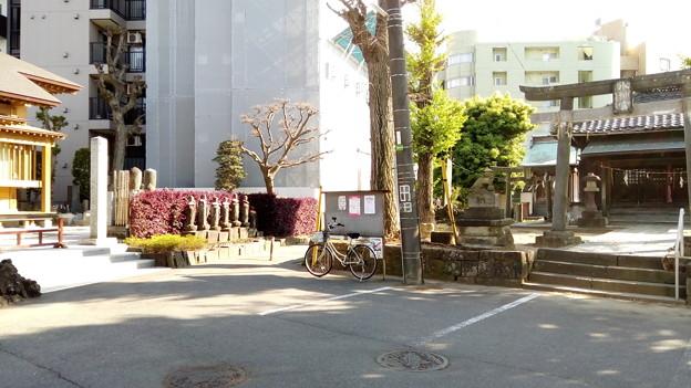 千葉県松戸市のパワースポット1