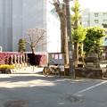 Photos: 千葉県松戸市のパワースポット1