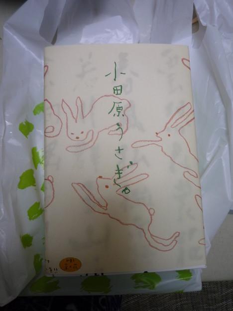 小田原うさぎ1