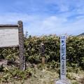 三ノ丸山頂