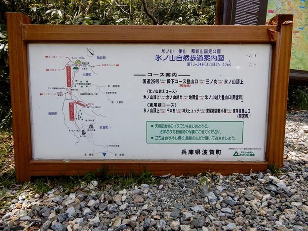 氷ノ山自然歩道案内図