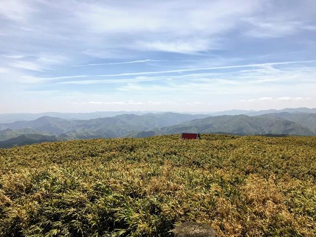 三ノ丸の櫓からの眺望