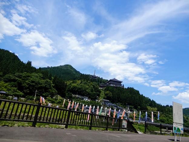 矢田川の鯉のぼり