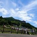 Photos: 矢田川の鯉のぼり
