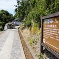 Photos: 大引の鼻展望台への遊歩道