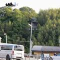 Photos: 淡河城