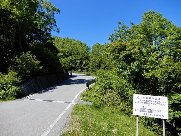 飯田市道上村1号線 林道御池山線