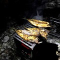 干物の炭焼き