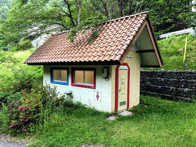Photos: トイレは入口付近に1か所のみ