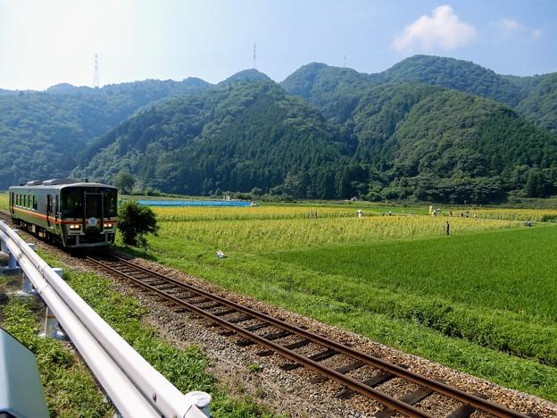 ひまわり畑と姫新線