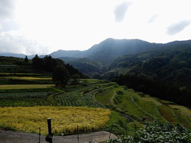 Photos: 上山高原から下りたら晴れてきた
