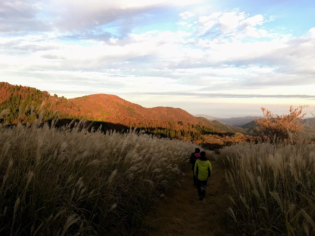上山高原の秋