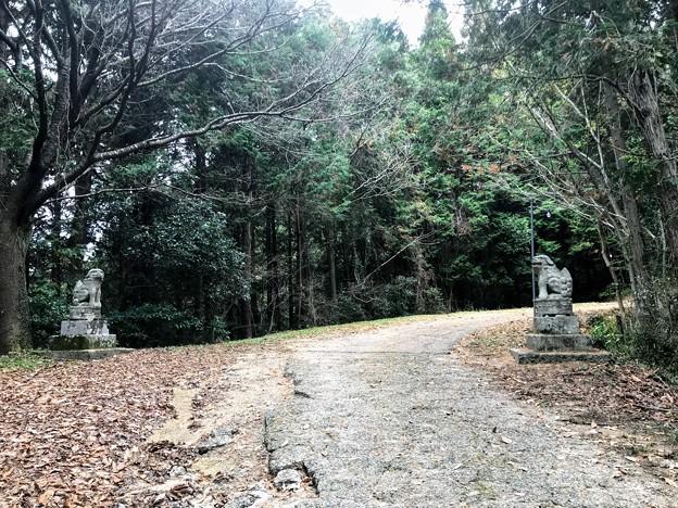 サムハラ神社の狛犬