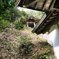 Photos: 金毘羅神社 本殿