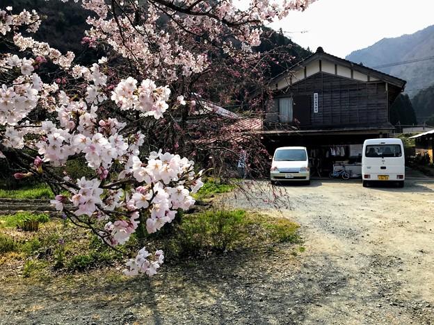 青垣 大名草の 三国農林(たまご直売)