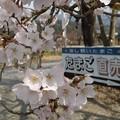 Photos: 三国農林 たまご直売の看板