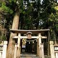 Photos: 青玉神社