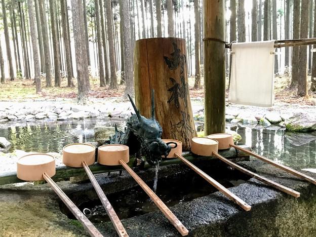 Photos: 青玉神社 手水舎の龍