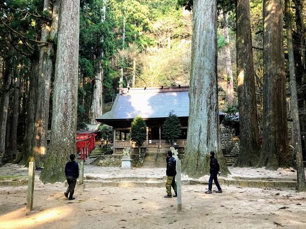 Photos: 青玉神社 境内