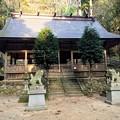 青玉神社 拝殿