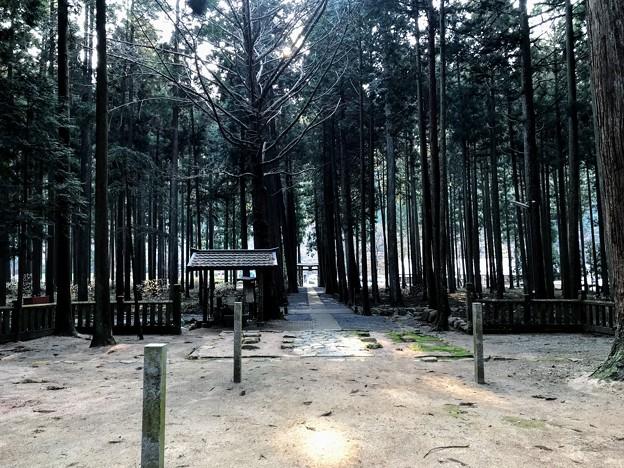青玉神社 参道