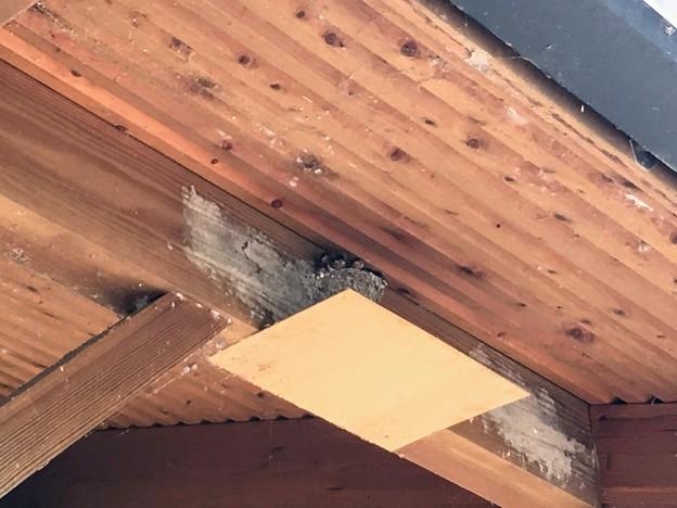 沢山の燕の巣がある道の駅宿場町ひらふく