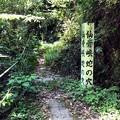 仙骨峡 蛇の穴