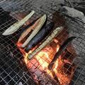 Photos: そうめんの薬味 焼きナス